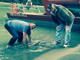 sturgeon-fishing-hope-bc (3)